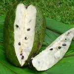 Khasiat Durian Belanda Masih Diperdebatkan